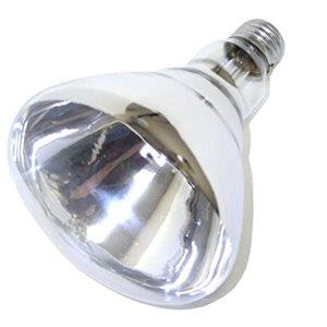 Ampoule claire pour lampe chauffante, 250W